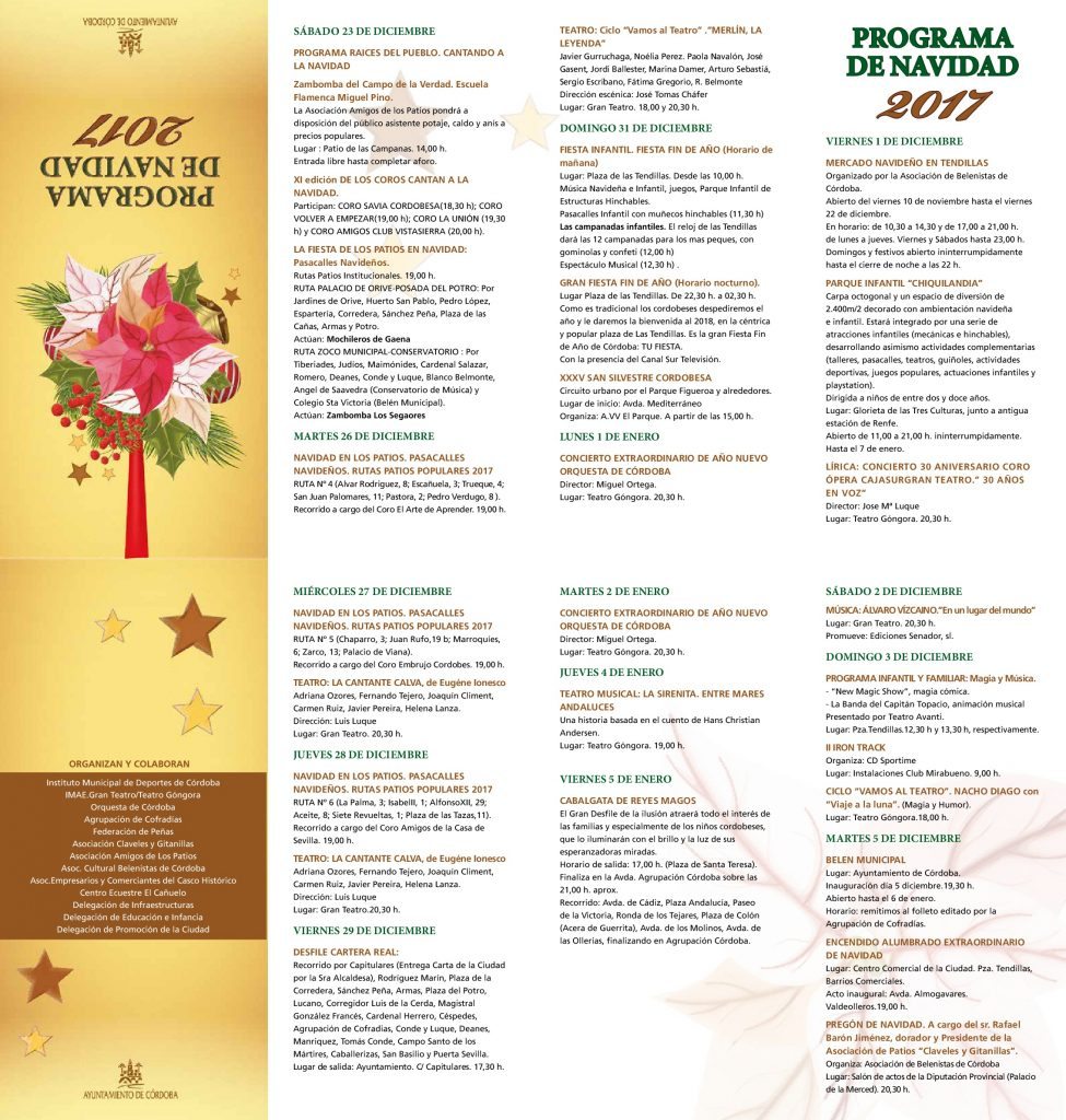 Programa Navidad 2017
