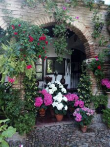 Visitar Córdoba y los patios populares